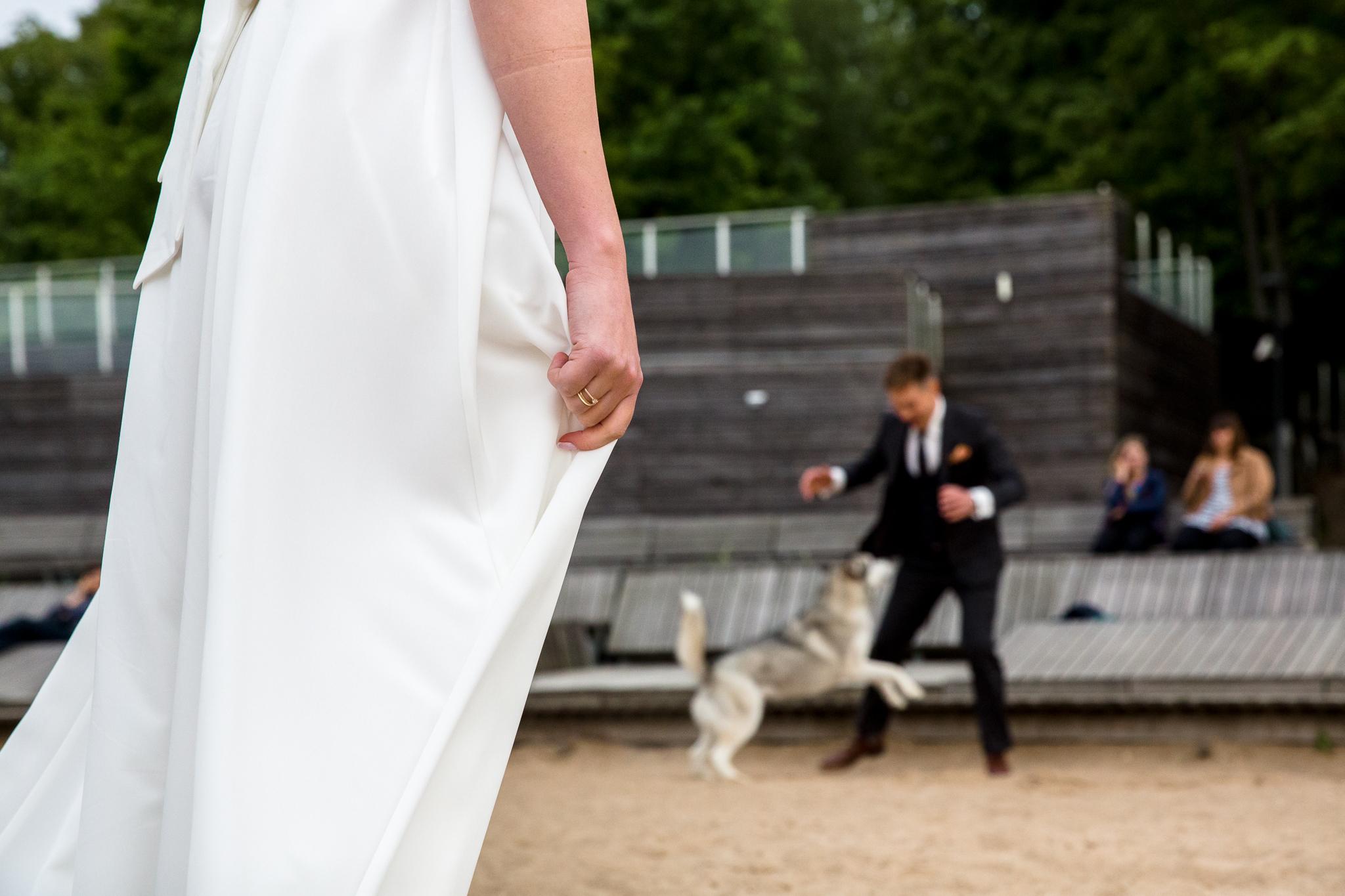 plener ślubny z psem nad jeziorem w Olsztynie